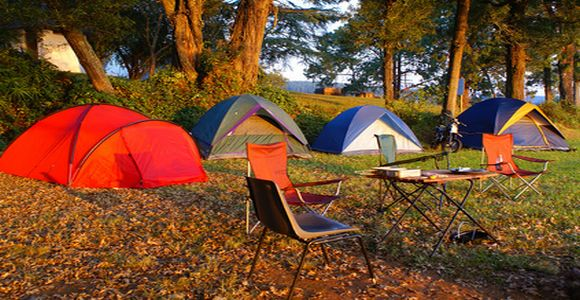 Image result for Camping Trip